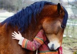 Hesteassisteret udvikling og terapi